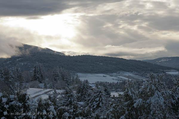 winterscene-006